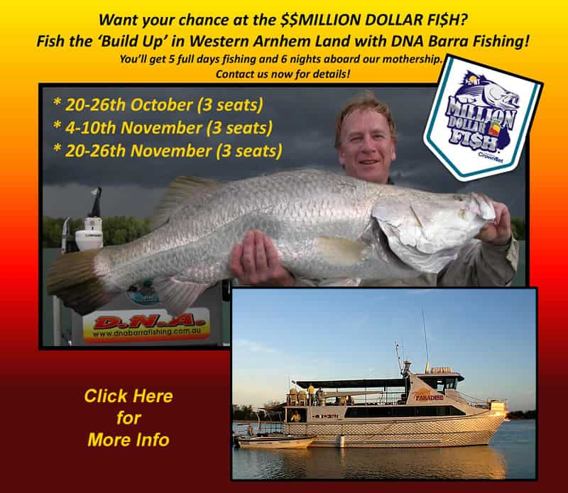 million dollar fish build up 2015
